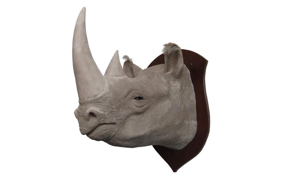 web_african_rhino